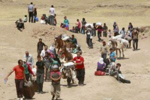 migranti e rifugiati e cambiamenti climatici